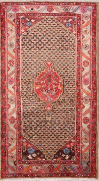 4x7 Koliaei Hamedan Persian Area Rug