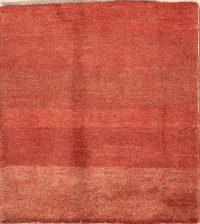 Solid Gabbeh Shiraz Persian Modern Wool Rug 2x3
