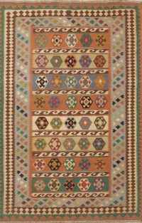 Tribal Flat-Weave Kilim Shiraz Persian Area Rug 5x7