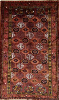 Geometric Shiraz Persian Area Rug 4x7