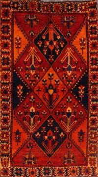 5x9 Lori Shiraz Persian Area Rug