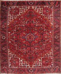 Geometric Heriz Persian Area Rug 10x13