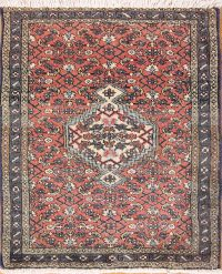 Geometric Bidjar Persian Area Rug 2x3