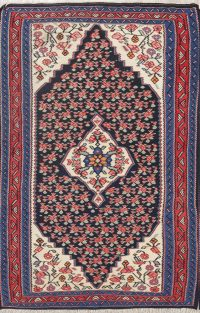 Geometric Senneh Persian Area Rug 3x5