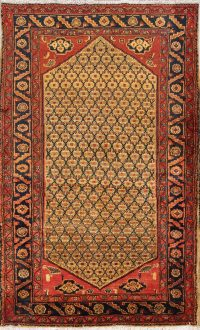 Geometric Koliae Persian Area Rug 4x7
