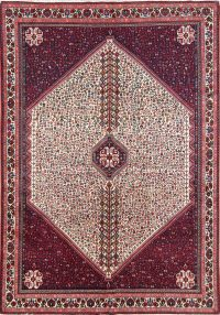 Vegetable Dye Tribal Wool Abadeh Shiraz Persian Area Rug 6x10