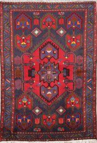 Geometric Zanjan Persian Area Rug 4x5