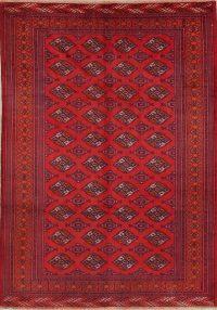 Geometric Turkoman Bokhara Persian Area Rug 7x10