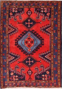Geometric Tribal Viss Sirjan Persian Area Rug 4x5