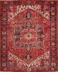 Geometric Heriz Serapi Persian Area Rug 9x11