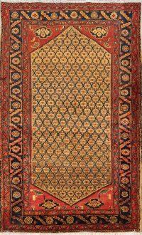 Koliaei Hamedan Persian Area Rug 4x7