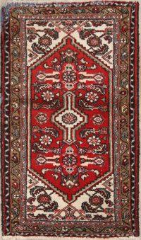 Geometric Hamedan Persian Area Rug 3x5