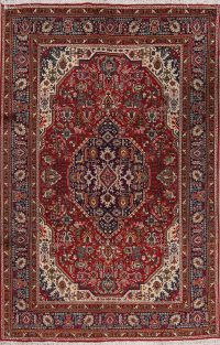 Geometric Tabriz Persian Area Rug 7x10