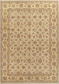 Floral Agra Indian Oriental Area Rug 10x14