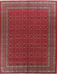 All-Over Geometric 10x13 Sarouk Persian Area Rug