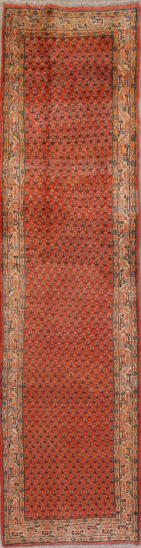 All-Over Paisley Botemir Persian Runner Rug 3x11