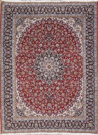 Floral Red Najafabad Turkish Oriental Area Rug Wool 10x12