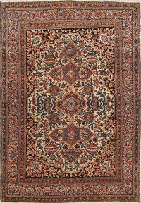 4x6 Sarouk Farahan Persian Area Rug