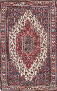 Geometric 4x7 Senneh Kilim Persian Area Rug