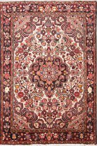 Floral 5x8 Borchelu Hamadan Persian Area Rug