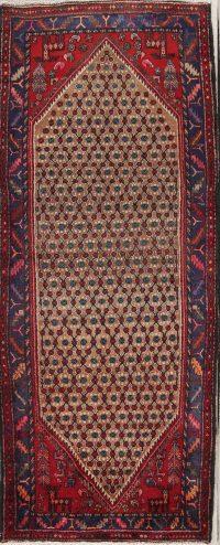 Koliaie Persian Runner Rug 4x9