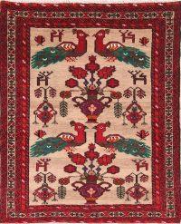 4x4 Balouch Persian Area Rug