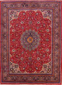 Floral Medallion 10x13 Sarouk Persian Area Rug