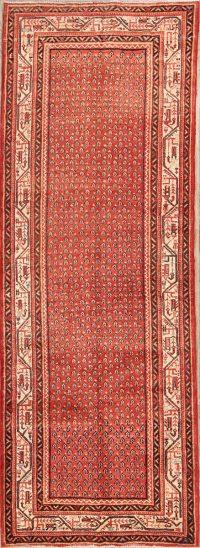 4x10 Botemir Persian Runner Rug