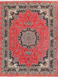 Traditional Floral 10x13 Heat-set Machine Made Persian Area Rug