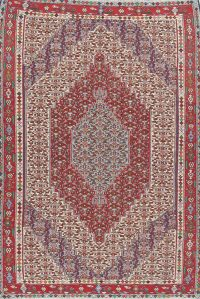 Geometric 7x9 Senneh Kilim Shiraz Persian Area Rug