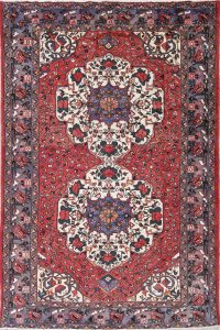 One-of-a-Kind Geometric Bakhtiari Persian Hand-Knotted 6x10 Wool Area Rug