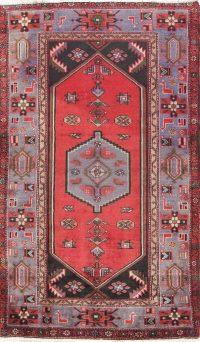 Geometric 4x7 Hamedan Persian Area Rug