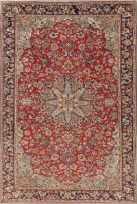 Floral Red Najafabad Persian Hand-Knotted 8x12 Wool Area Rug