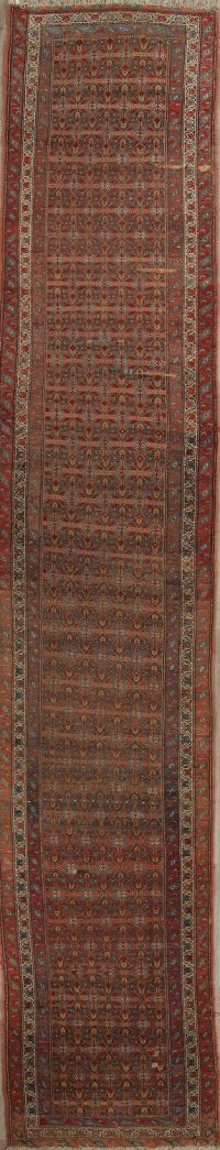 Pre-1900 Vegetable Dye Bidjar Persian Hand-Knotted 3x16 Wool Runner Rug