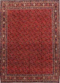 All-Over Floral Bidjar Persian Area Rug 9x12
