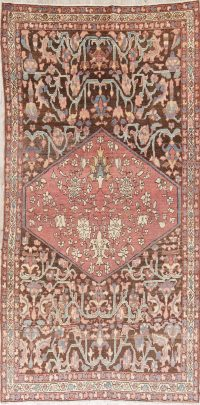 Pre-1900 Vegetable Dye Bakhtiari Persian Area Rug 5x9