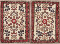 Set Of 2 Floral Lilian Persian Wool Rug 2x3