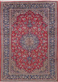 Vintage Floral Red Najafabad Persian Wool Area Rug 8x11