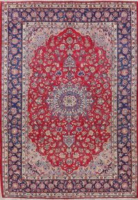 Vintage Floral Najafabad Persian Wool Area Rug 9x12