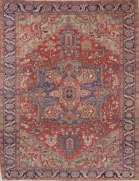 Pre-1900 Vegetable Dye Heriz Persian Wool Area Rug 9x12