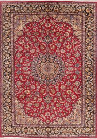 Floral Red Najafabad Persian Wool Area Rug 9x13
