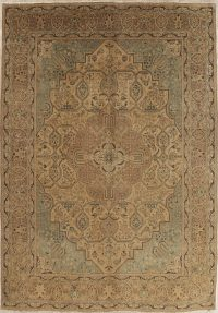 Muted Distressed Tabriz Persian Wool Area Rug 9x13