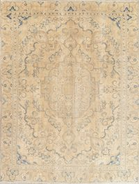 Muted Distressed Tabriz Persian 9x12 Wool Area Rug