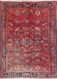 Faded Geometric Heriz Persian Wool Area Rug 7x9