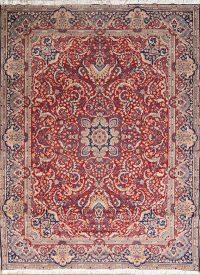 Soft Plush 9x13 Sarouk Machine Made Persian Area Rug