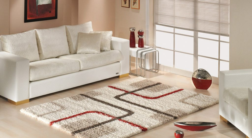 decoration with modern rug