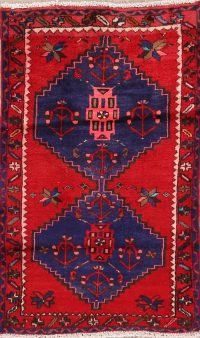 Tribal Geometric Hamedan Persian Area Rug 3x4