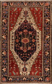 100% Vegetable Dye Antique Malayer Persian Area Rug 4x7