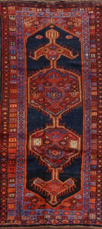 100% Vegetable Dye Geometric Lori Persian Runner Rug 4x9