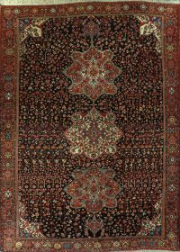 100% Vegetable Dye Bakhtiari Persian Area Rug 12x17 Large
